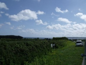 Lands End in view
